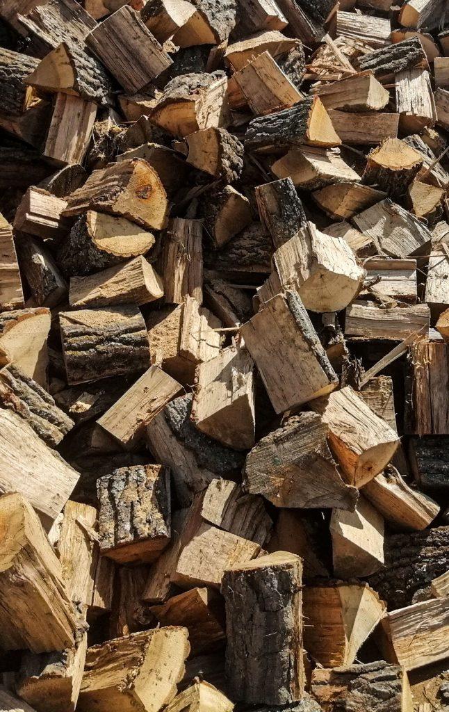 drvo-pocetna01